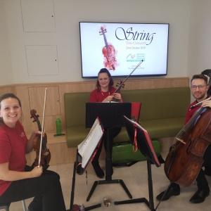 String trio at CDL